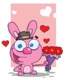 提供桃红色浪漫的兔宝宝花 免版税库存照片