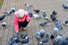 提供的女孩鸽子 免版税图库摄影