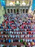 提供祷告的伊斯兰教的献身者 免版税库存图片