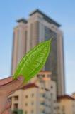 提供绿色技术和环境友好楼房建筑的概念 免版税库存照片