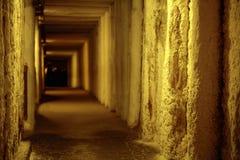 提出空的走廊的图片 库存图片