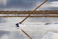 提取与一块刮板的盐在盐平底锅 图库摄影