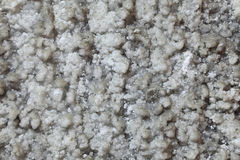 提取盐墙壁 免版税库存图片