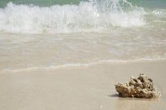 提取背景美好的蓝色cloudscape金黄海洋沙子海运春天夏天日落 免版税图库摄影