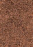 提取自然纸纹理 库存图片