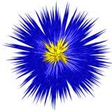 提取蓝色花 皇族释放例证