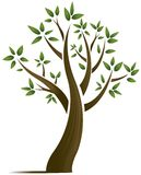 提取设计结构树向量 库存图片
