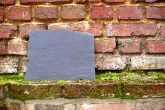 提名在一个生苔老砖墙上的板材 免版税库存照片