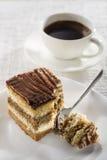 提拉米苏蛋糕 库存图片