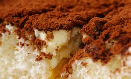提拉米苏,点心,白色,背景,意大利语,蛋糕,甜点,食物,巧克力, mascarpone,奶油,饼干,可可粉,乳酪, 免版税图库摄影