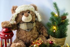 握在一个红色灯笼的逗人喜爱的玩具熊一个爪子在白色背景 在框架,您能看到一棵小圣诞树与 免版税库存照片