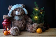 握在一个红色灯笼的逗人喜爱的玩具熊一个爪子在黑背景 在框架,您能看到一棵小圣诞树与 库存照片