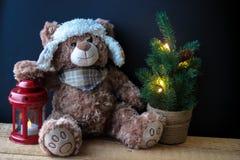 握在一个红色灯笼的逗人喜爱的玩具熊一个爪子在黑背景 在框架,您能看到一棵小圣诞树与 库存图片