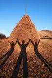 握在干草堆的三个阴影手 库存照片