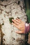 握在白桦树皮的时髦的旅客女孩手在晴朗的森林里 免版税库存照片
