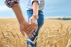 握在粮田的年轻夫妇手 免版税库存图片