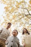 握手和走通过公园的家庭在秋天,低角度视图 库存图片