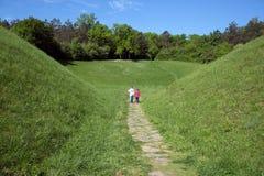 握手和走通过往森林的绿色领域的两个小男孩背面图  免版税库存照片