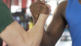 握手在健身房的两个男性朋友,大力士,支持的肌肉胳膊 影视素材