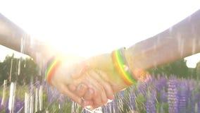 握手在日落,太阳, LGBT标志,雨的两个女孩 股票视频