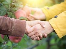 握手的两个人在果树园 免版税库存图片