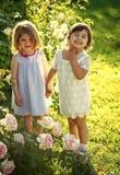 握手的两个女孩在夏天庭院里在晴天 免版税库存照片