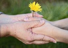 握手的孩子和母亲 库存照片