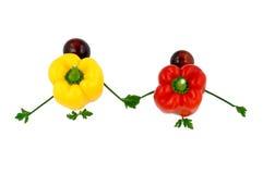 握手的愉快的健康菜家庭 图库摄影