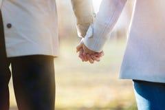 握手的爱恋的夫妇特写镜头,当走在公园时 免版税库存图片