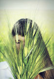 握麦子的耳朵的年轻逗人喜爱的妇女在手上 库存照片