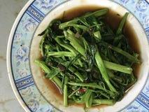 搅动与盐味的大豆垫朴boong的油煎的沼泽圆白菜 免版税库存照片