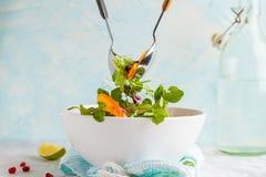搅动明亮的柿子沙拉 健康绿色素食食物 免版税库存照片