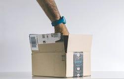 搜寻在亚马逊最初箱子里面的人 免版税库存照片