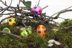 搜索的隐藏的装饰的复活节彩蛋 免版税库存照片