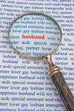 搜寻丈夫 免版税库存照片