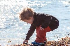 搜寻壳的年轻男孩在海滩 库存图片
