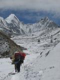 搬运工在喜马拉雅山 免版税库存图片