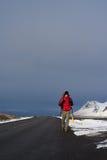 搭车背包徒步旅行者在冰岛 免版税图库摄影