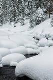 搽粉在山河和森林降雪石头的随风飘飞的雪  库存照片