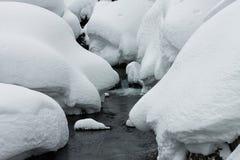 搽粉在山河和森林降雪石头的随风飘飞的雪  免版税库存图片