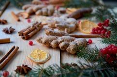 搽粉的姜,桔子,茴香,桂香,在木背景的未加工的红色莓果 用被弄脏的圣诞树分支装饰 库存图片