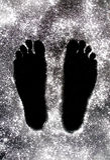 搽粉的英尺 免版税图库摄影