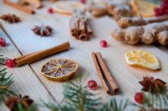 搽粉的香料桔子,茴香,桂香,姜,在木桌上的未加工的红色莓果 用被弄脏的圣诞树分支装饰 免版税库存照片