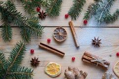 搽粉的香料桔子,茴香,桂香,姜,在木背景的未加工的红色莓果 用圣诞树分支装饰 库存照片
