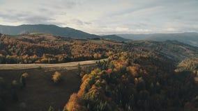 摄影厚实的森林盖高地反对小山峰顶 影视素材