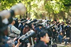 摄影师在景山公园,北京,中国 库存照片