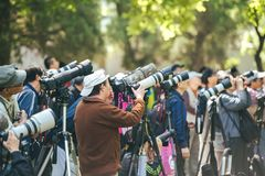 摄影师在景山公园,北京,中国 免版税库存图片