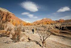 摄影师在沙漠 免版税库存图片