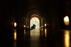 摄影师在隧道的末端 库存照片