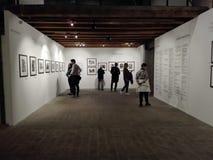 摄影陈列在安科纳的文化中心在意大利 图库摄影